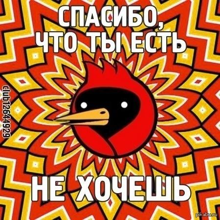 оао картинки с птицей омская птица быть, из-за того