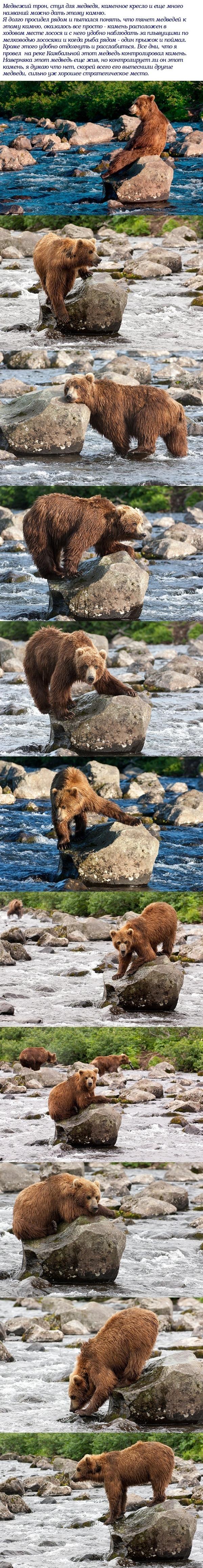 Медвежий трон Автор фото С.Горшков
