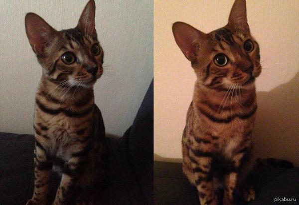 Фото с разницей ровно в 1 год