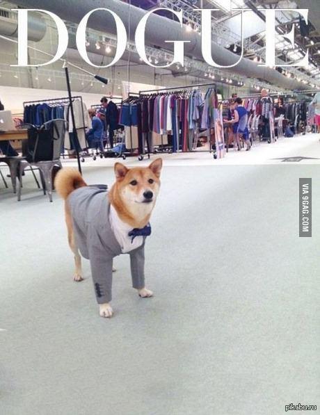 VOGUE wow! so fashion
