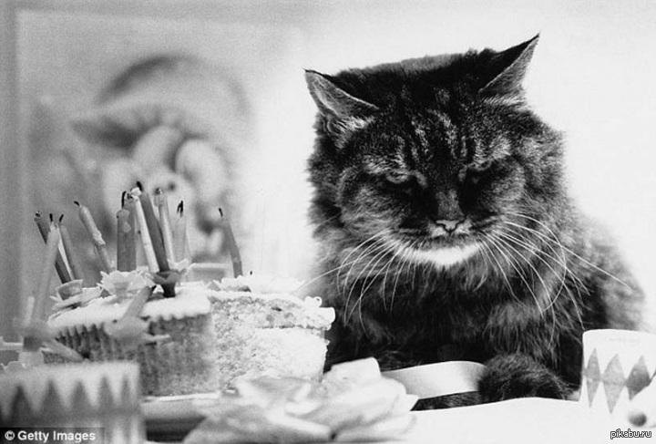 картинки день рождения-грустный праздник